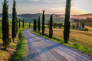 tramonto-e-strada-di-bobina-con-i-cipressi-toscana-47221003